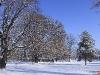zima-tt-2001-11