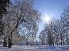 zima-tt-2001-19