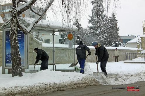 sneh-jan2