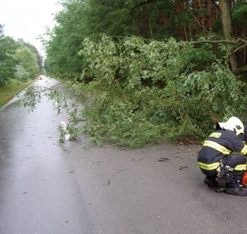 hasici-strom