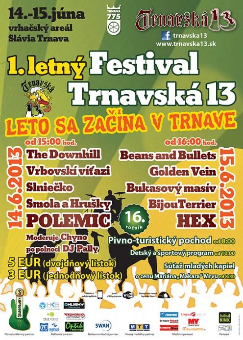 plagat-tt13-2013