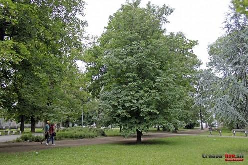ihrisko-park