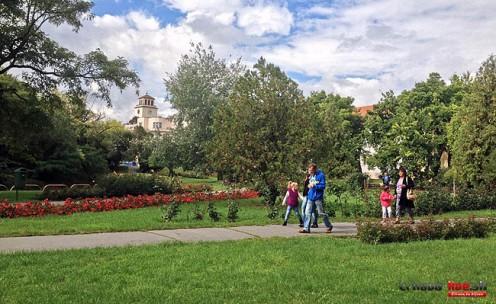ruzovy-park