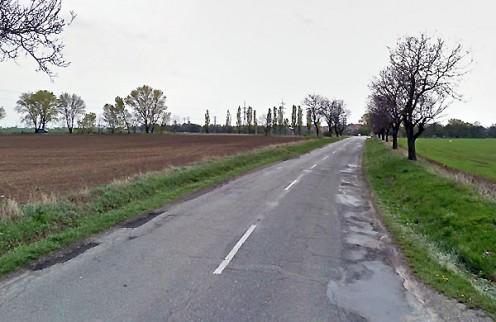 zelenec-cesta