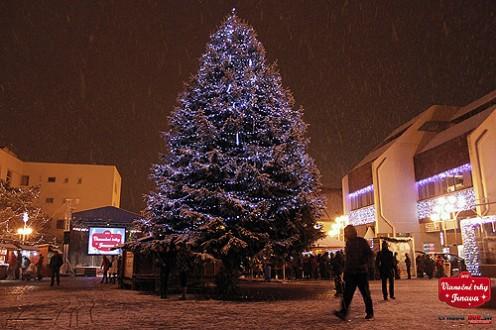 strom-vianoce-trnava