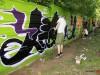 botanicka-graffiti-2012-26