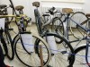 vystava-cyklistika-11