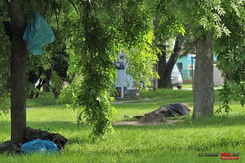 bezdomovec-kopanka