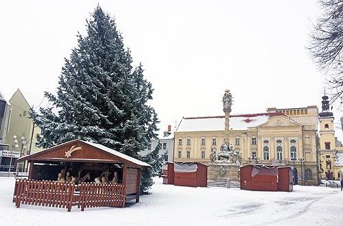 sneh6