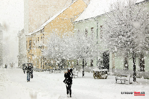 sneh-2