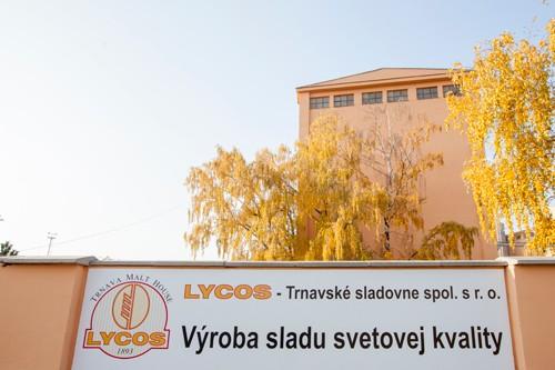 lycos2